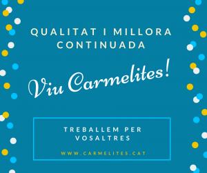 Viu Carmelites
